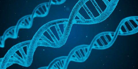 «Что такое ДНК?» в парке «Зарядье»