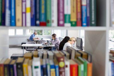 Смотреть кино, читать комиксы, планировать будущее: чем заняться в обновленной библиотеке имени Ахматовой