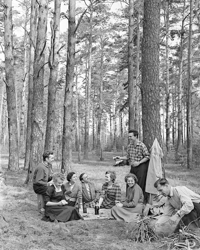 Moscow's Likhachev Automobile Factory workers on an outing in a forest outside Moscow. Photo by N. Maksimov. May 1960. Moscow's Main Archive Directorate