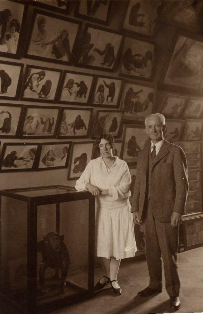 Надежда Ладыгина-Котс и известный американский психолог Роберт Йеркс в Дарвиновском музее. 1929 год. Главархив Москвы