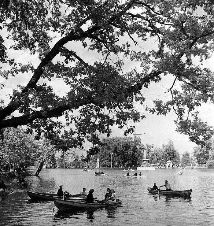 Sunday in Ostankino Park. Photo by David Sholomovich, May 1953. Main Archive Directorate