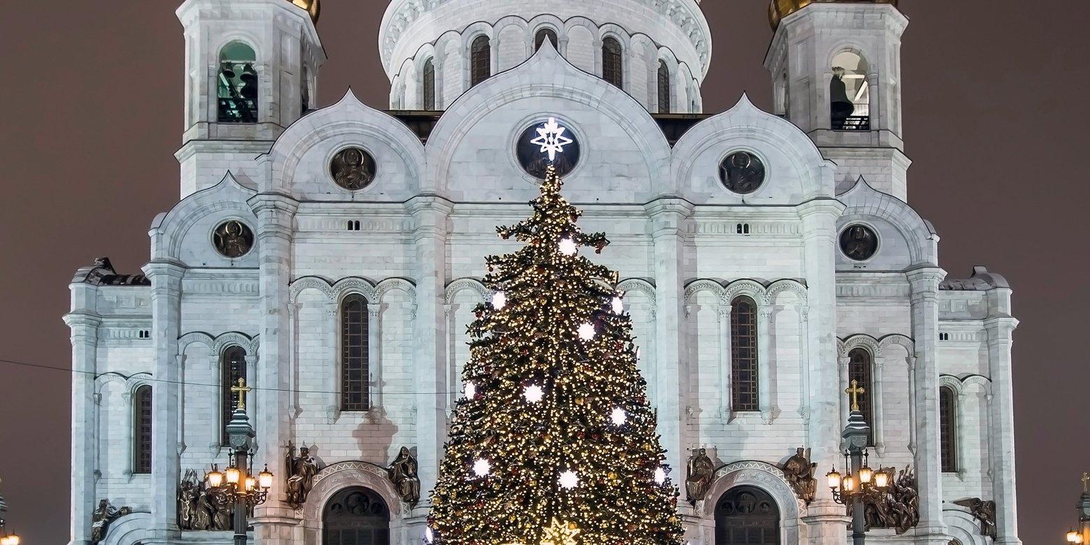 300 елей, световые арки и гирлянды: как украсят город к Новому году