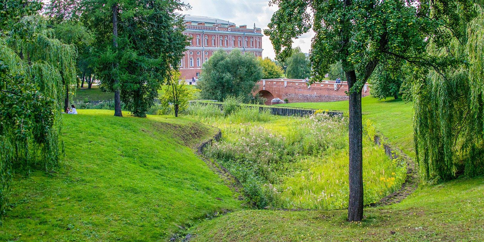 Оранжерейные пруды. Фото: mos.ru. Юлия Иванко