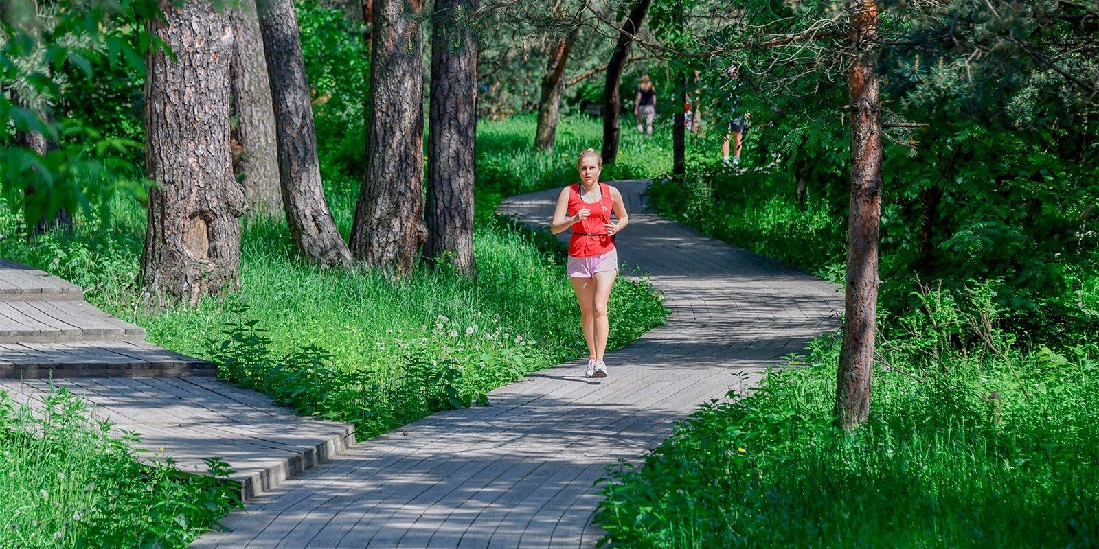 Заняться сопртом можно в Воронцовском парке