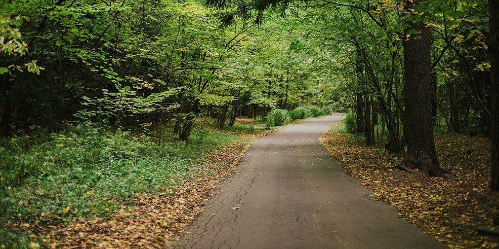 Лето в «Моем районе»: где покормить лань, пройти «лесной квест» и посетить экскурсию по заказнику
