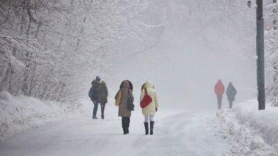 Метель и гололедица: москвичей предупредили об ухудшении погоды