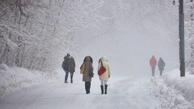 Прогноз погоды: в столице метель и гололедица