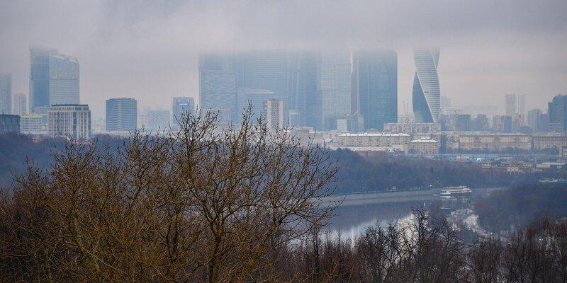 Синоптики предупредили москвичей о сильном тумане