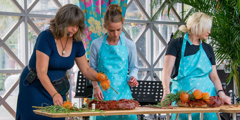 shows and cooking