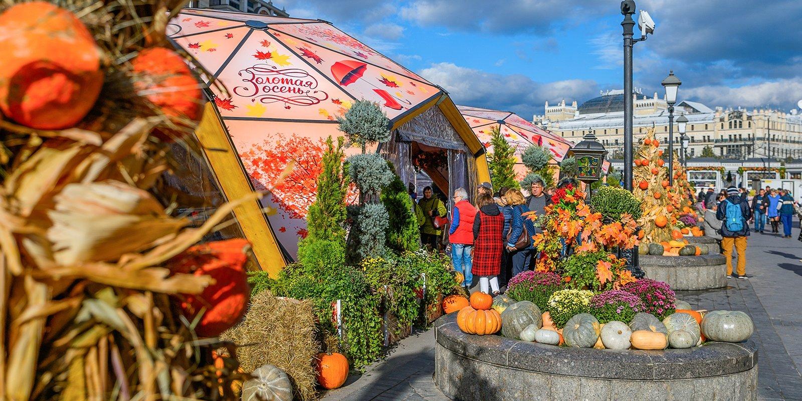 Деликатесы, история сельского хозяйства и новые технологии: как пройдет фестиваль «Золотая осень»