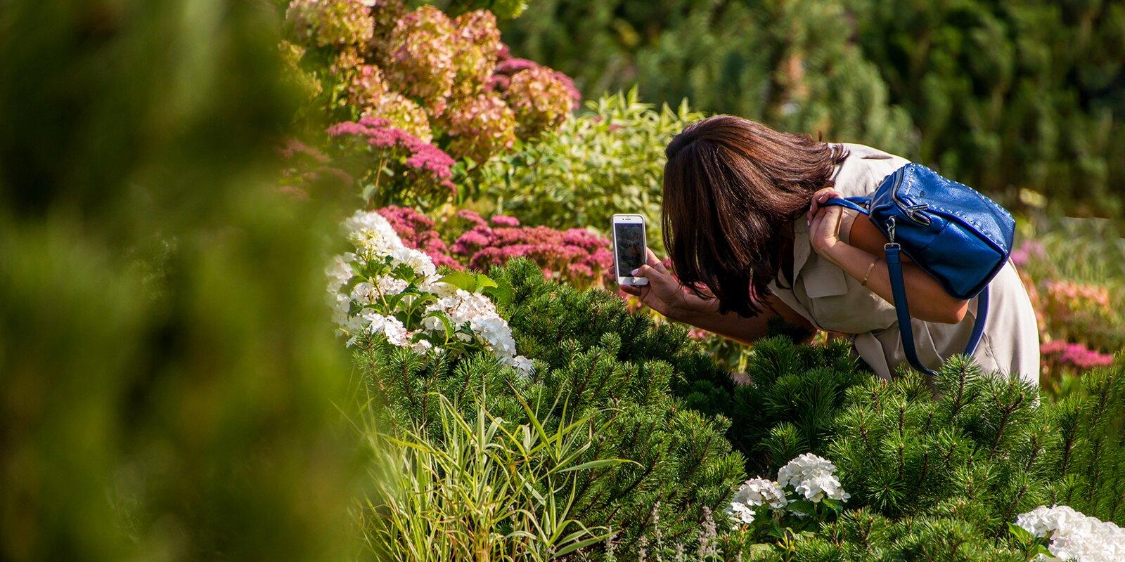 1 сентября в Москве откроется фестиваль Цветочный джем